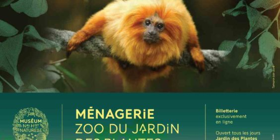 Contest : invitations for the Menagerie, zoo of the Jardin des Plantes