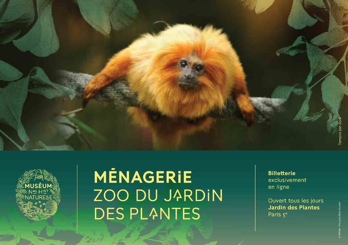 zoo jardin des plantes