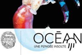 l'expo sur la vie au fond des océans à la Grande Galerie de l'Evolution