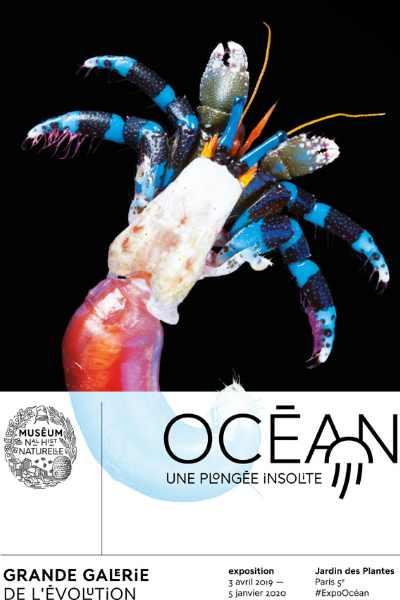 exposition ocean au MNHN