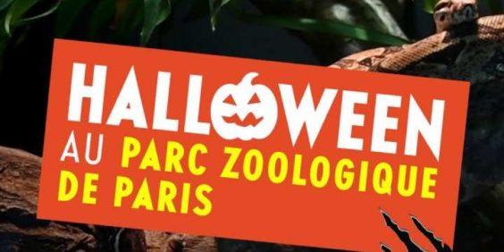 Halloween au Parc Zoologique : la journée frisson