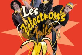 les zelectrons frits