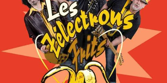 The unforgettable Halloween with Zelectrons Frits