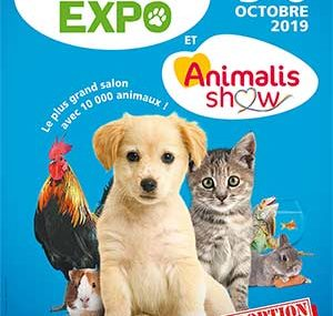 le salon animal expo au Parc Floral